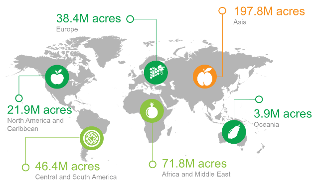 agerpoint - Global Acres Of Permanent Crops