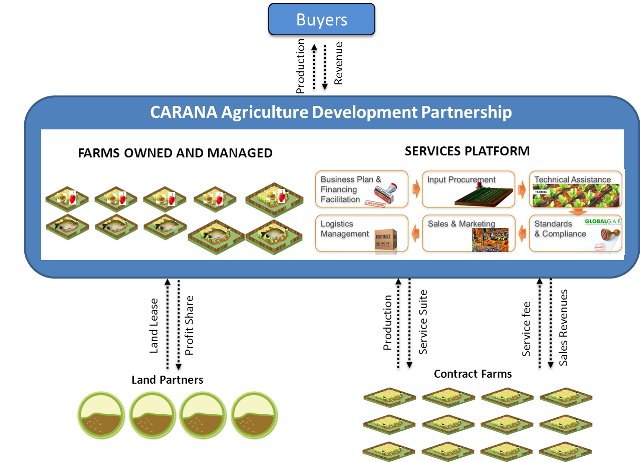 carana-agribusiness - Business Model